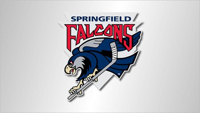 SF-Falcons-spotlight.jpg